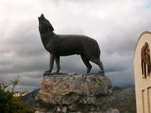 Lobo del grito, museo de ciencias naturales imagenes de archivo