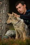 Lobo em uma trela com o homem branco que toma dele Imagem de Stock