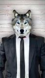 Lobo en el traje negro, concepto abstracto del negocio Fotos de archivo libres de regalías