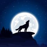 Lobo en fondo de la luna stock de ilustración