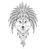 Lobo en la cucaracha india Tocado indio de la pluma del águila Tienda extrema del deporte Imagen de archivo libre de regalías