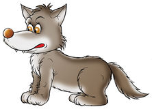 Lobo gris libre illustration