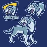 Lobo no estilo da mascote do esporte imagens de stock royalty free