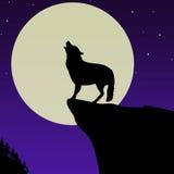 Lobo que grita delante de la luna Imagen de archivo