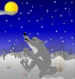 Lobo que grita en la luna Imagenes de archivo