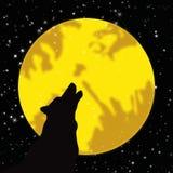Lobo que urra na lua Imagem de Stock Royalty Free