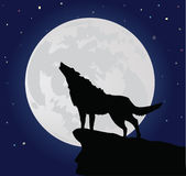 Lobo só ilustração stock