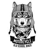 LOBO selvagem para a motocicleta, t-shirt do motociclista ilustração royalty free