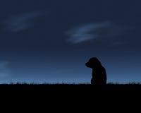 Lobo solitário ilustração stock