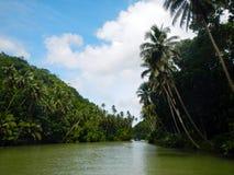 Loboc河巡航 库存照片