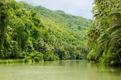 Loboc River at Bohol Island, Philippines Royalty Free Stock Photos