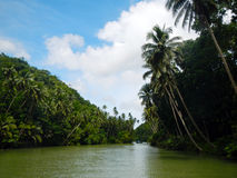 Loboc river cruise Stock Photo