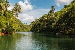 Loboc River, one of the major tourist destinations of Bohol.  stock photo