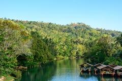 Loboc rzeka w dżungli, Bohol wyspa w Filipiny Fotografia Royalty Free