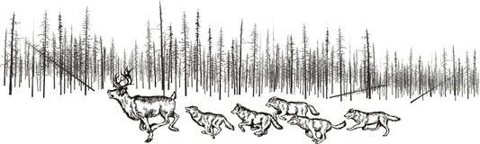 Lobos da caça para cervos ilustração royalty free