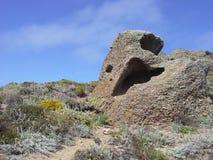 Lobos del punto, California Immagini Stock