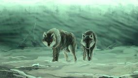 Lobos em um blizzard denso foto de stock royalty free