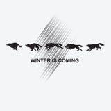 Lobos negros en un fondo blanco Imagen de archivo libre de regalías