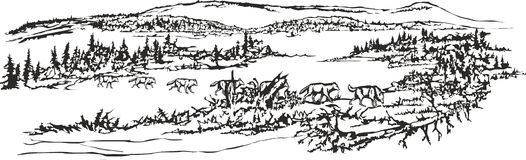 Lobos, passando o lago ilustração royalty free