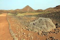 Lobos wyspy Fuerteventura wyspy kanaryjska Hiszpania Obrazy Royalty Free
