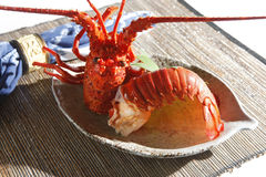 Lobster. Steamed lobster on the dish Stock Images