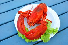 Lobster 2 Royalty Free Stock Photography