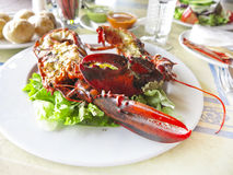 Lobster. On a plate and vegetable and potatoes stock photos