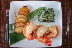 Lobster. Plate with lobster rice and potato Royalty Free Stock Images