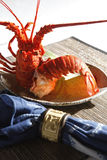 Lobster. Steamed lobster on the dish Stock Image