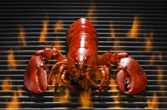 Lobster on aHot Faming Grill Stock Images