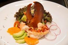 Lobster avocado salad Stock Photography