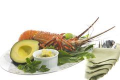 Lobster and avocado sauce Stock Photos