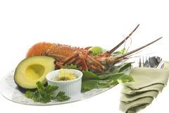 Lobster and avocado sauce Stock Photos