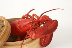 Lobster in basket. Cooked lobster in basket royalty free stock photography