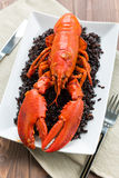 Lobster with black rice Royalty Free Stock Images