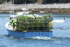 Lobster boat heading out to set traps. A blue lobster boat full of green lobster traps heading out of Bar Harbor in Maine to set the traps Stock Image