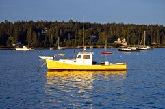 Lobster boats at dawn. A view of a typical Maine lobster boat floating at anchor in Southwest Harbor, Maine in the early morning light Stock Photos