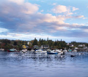 Lobster Boats In Harbor stock image