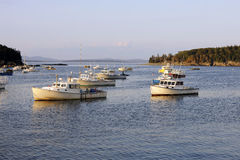 Lobster Boats in Harbor Royalty Free Stock Photo