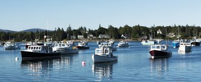Lobster boats moored on a Sunday afternoon in summer. Lobster boats are moored in Bass Harbor on a summer Sunday as this is there day off royalty free stock image