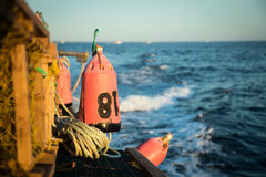 Lobster Buoy Stock Images