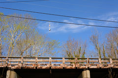 Lobster buoys hanging on telephone wire above wooden bridge stock photography