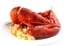 Lobster on butter potatoes Stock Photo