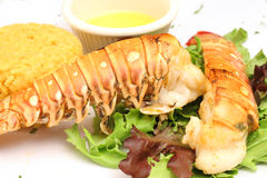 Lobster & butter with a salad. Shot of a Lobster & butter with a salad Royalty Free Stock Photos