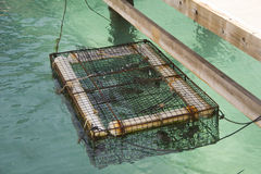 Lobster Cage Stock Photo