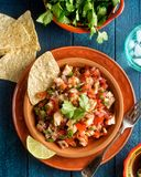 Lobster Ceviche with lime, cilantro and corn chips. A plate of delicious lobster ceviche with lime, cilantro and corn chips Royalty Free Stock Photos