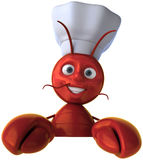Lobster chef Stock Image