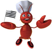 Lobster chef from bretagne Stock Photography