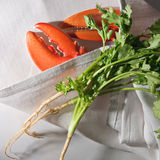 Lobster Claw. And coriander herb on Tablecloth Royalty Free Stock Images