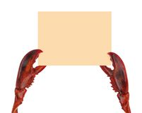 Lobster claws holding a panel. Stock Photography